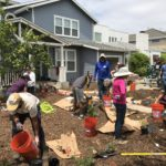 LADWP Turf Replacement Program Offers Free Workshops and $3 Per Square-Foot Rebate to Help Customers Save